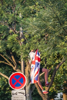 Patriotic in a Tree