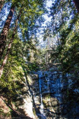 Pfeiffer Falls...Although it's more of a dribble